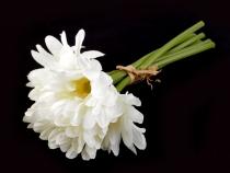 Dekorace květy gerbery 27 cm (30 ks)