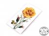 Jehly mapky růže Galant (1 ks)