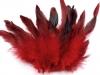 Slepičí peří délka 6-15 cm (20 ks)