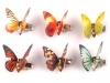 Dekorace motýl 3D s klipsem (24 ks)