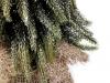 Vánoční stromek zasněžený (1 ks)